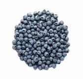 ny isolerad white för blåbär Royaltyfria Bilder