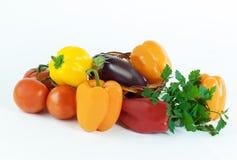 Ny isolerade aubergine, tomater, spansk peppar och persilja Royaltyfria Foton
