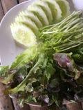 ny japansk salladgrönsak för mat Arkivfoto