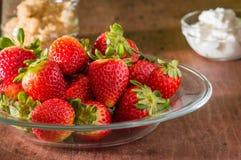 Ny jordgubbar och kräm, rum för text royaltyfri bild