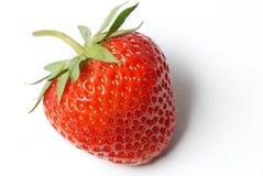 ny jordgubbe arkivfoto