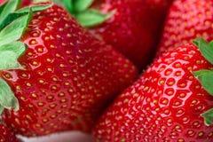 ny jordgubbe för bakgrund Moget i närbild Royaltyfri Bild