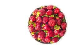 Ny jordgubbe i en vit bunke som isoleras på vit bakgrund f Arkivbilder