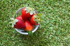 Ny jordgubbe i ställe för glass bunke på gräs Arkivfoto