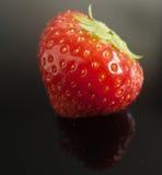 Ny jordgubbe med reflexion Arkivfoton