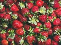 Ny jordgubbetextur, tapet och bakgrund Fotografering för Bildbyråer