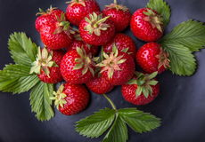 ny jordgubbewhite för bunke Royaltyfri Foto