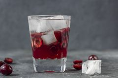 Ny k?rsb?rsr?d coctail En coctail med gin eller vodka, körsbärsröd sirap och stycken körsbär och is royaltyfria foton