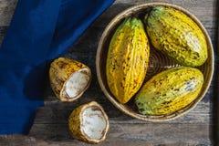 Ny kakaofrukt I korg royaltyfri bild