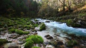 Ny kall bergflod med ljudet av naturen arkivfilmer