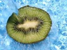 ny kiwi arkivfoto