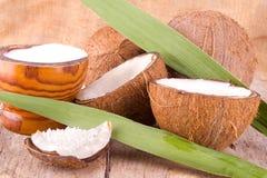 Ny kokosnöt Arkivbilder