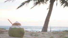 Ny kokosnöt med att dricka sugrör på den tropiska stranden, Thailand lager videofilmer