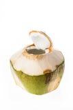 Ny kokosnöt som är klar att dricka Arkivfoton