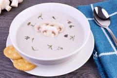 Ny kräm av champinjonsoppa i en vit bunke Fotografering för Bildbyråer