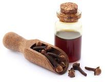 Ny kryddnejlika med olja i en krus royaltyfria foton