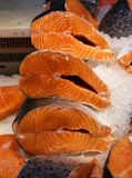 Ny laxbiff som är till salu i isen R?d fisk Ställa ut av ett fisklager royaltyfri bild