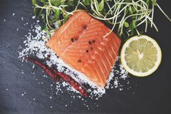 Ny laxfilé på mörk bakgrund/rå laxfiskskaldjur med kryddor för tomatcitronörter och solrosgrodden arkivbilder