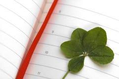 ny leaf för växt av släkten Trifoliumdag fem Arkivbild