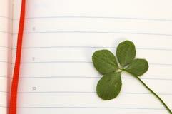 ny leaf för växt av släkten Trifoliumdag fyra Arkivbild