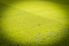 Ny lekplats för naturlig ny textur för grönt gräs Fotografering för Bildbyråer