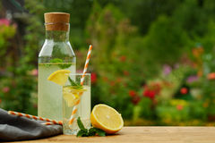 Ny lemonad med mintkaramellen, utomhus- sommar Royaltyfri Bild