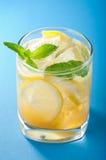 ny lemonade royaltyfri fotografi