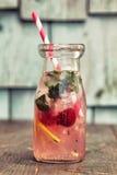 ny lemonade Royaltyfria Bilder