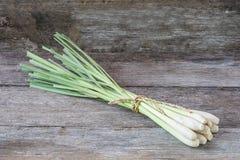 Ny lemongrass (citronellolja) på träbakgrund Arkivbilder