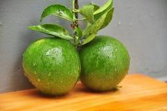 ny limefrukt arkivbilder