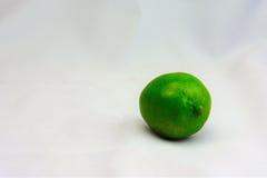 ny limefrukt Royaltyfria Bilder