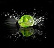ny limefrukt för begrepp fotografering för bildbyråer