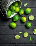 Ny limefrukt i hinken arkivfoto