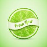 Ny limefrukt med bandet Royaltyfri Bild