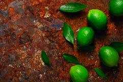 Ny limefrukt med sidor på rostig metallbakgrund Royaltyfri Foto