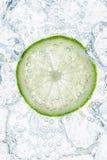 Ny limefrukt och is Royaltyfria Bilder