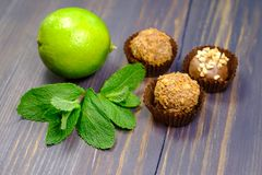Ny limefrukt, tryfflar och mintkaramell royaltyfria foton