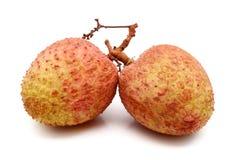 Ny litchiplommonfrukt som isoleras på vit bakgrund royaltyfria bilder