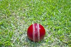 Ny ljus röd syrsaboll på fält för grönt gräs Royaltyfri Fotografi