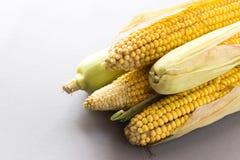 Ny majs på majskolvar på den svarta tabellen Royaltyfri Foto