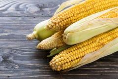 Ny majs på majskolvar på den svarta tabellen Fotografering för Bildbyråer