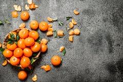 Ny mandarine i korgen Arkivfoto