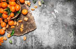 Ny mandarine i korgen Royaltyfri Bild