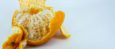 ny mandarinorange Royaltyfria Foton