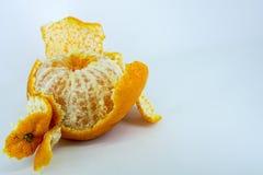 ny mandarinorange Arkivbild