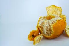 ny mandarinorange Royaltyfria Bilder