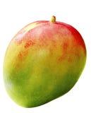Ny mango Arkivfoton