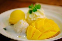 Ny mango Royaltyfria Bilder
