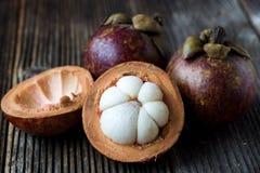 Ny mangosteenfrukt Royaltyfri Foto