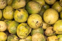 Ny maracuya för passionfrukt (maracuja) på en peruansk marknad i Arequipa Naturlig look fotografering för bildbyråer
